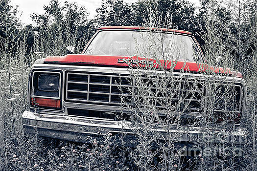 Edward Fielding - Old Dodge Pickup in the Weeds White River Junction Vermont