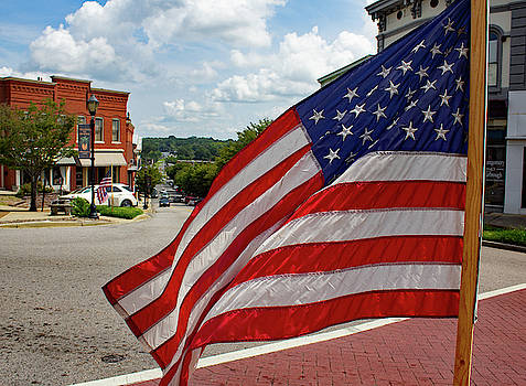 Old Glory Flying in South Carolina by Joseph C Hinson