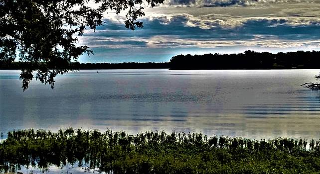Old Hickory Lake by Peggy Leyva Conley