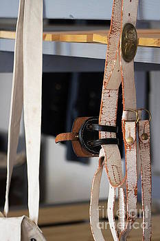 Old Leather Belt by Colleen Cornelius