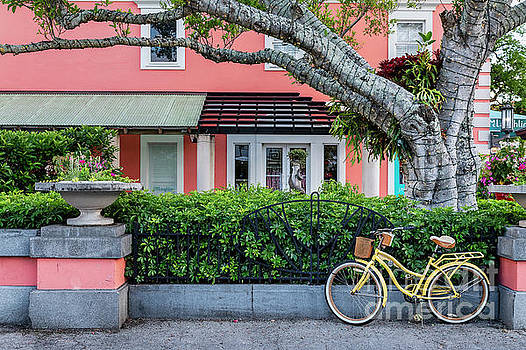 Old Naples Florida by John Greim