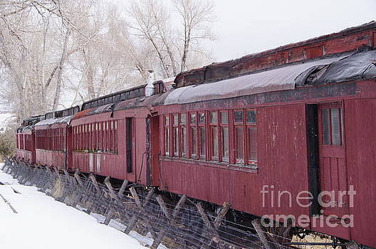 Old passenger cars by Jeff Swan
