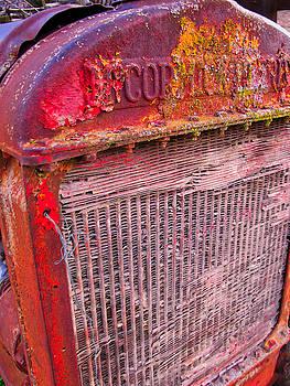 Old Red by Tom Gresham