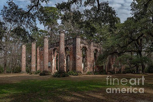Old Sheldon Church Ruins - Live Oaks by Dale Powell