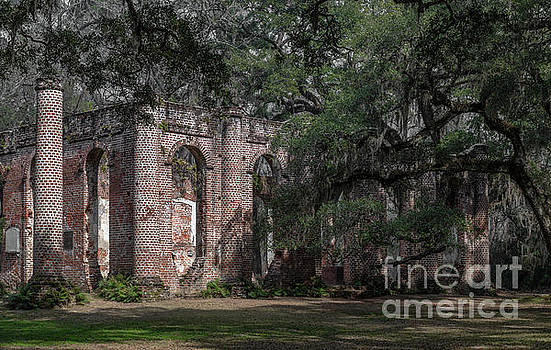 Old Sheldon Church Ruins - Yemassee by Dale Powell