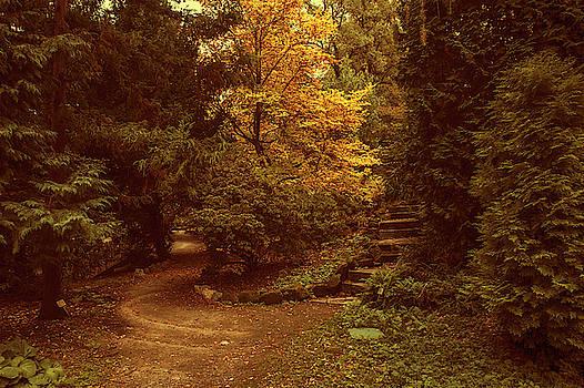 Jenny Rainbow - Old Stairs in Secret Garden