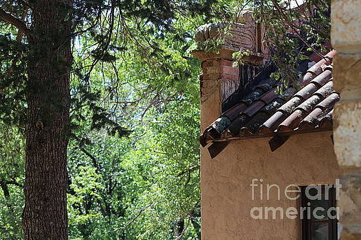 Old Terracotta Roof with Lichen at Fort Stanton New Mexico by Colleen Cornelius