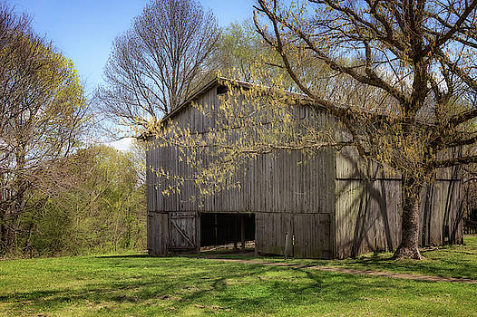 Old Tobacco Barn by Susan Rissi Tregoning