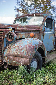 Old Vintage Blue Pickup Truck Among the Weeds by Edward Fielding