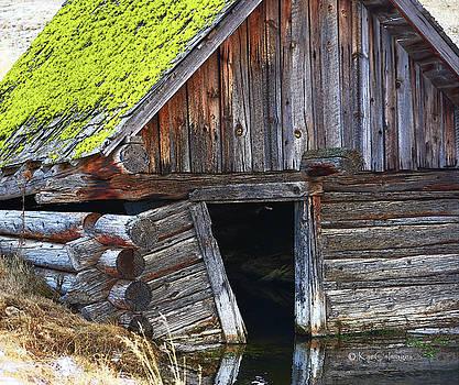 Kae Cheatham - Old Well House #1