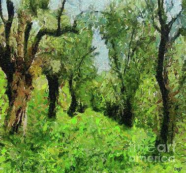 Olive Grove In The Early Spring by Dragica Micki Fortuna