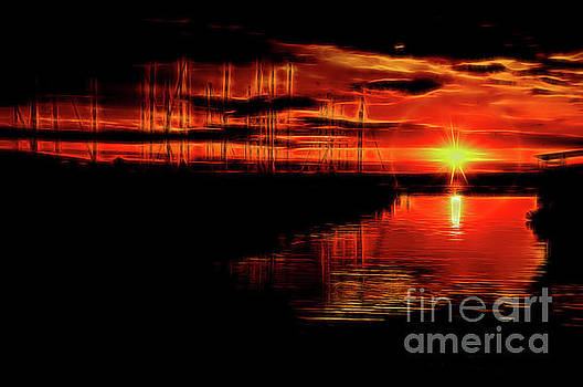 On Fire by Diana Mary Sharpton