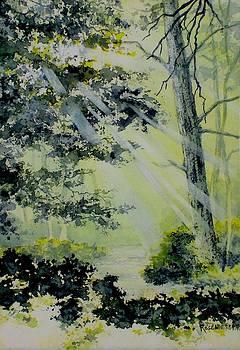 On the Sunlit Path by Carolyn Rosenberger