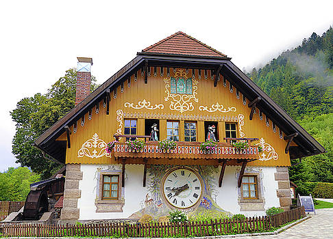 One Of The Black Forest Village Shops In The Black Forest Area Of Bavaria Germany by Richard Rosenshein