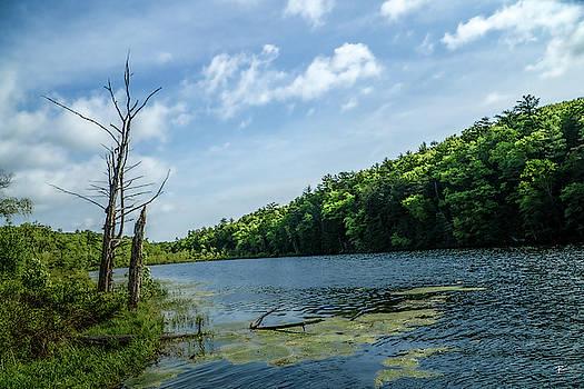 Onteora Lake, Kingston, NY by Tom Romeo