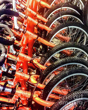 Orange Bicycles by Thomas Marchessault