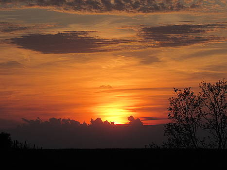 Orange Sky by Mandy Byrd