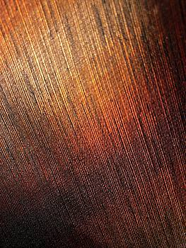 Orange Tie 2 by Daniel Thompson