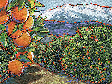 Oranges by Nadi Spencer