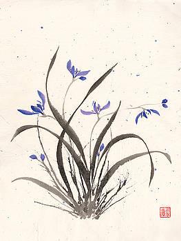 Orchid Splatter by Derek Motonaga