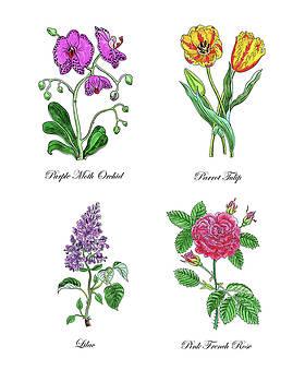 Irina Sztukowski - Orchid Tulip Lilac Rose Botanical Watercolor