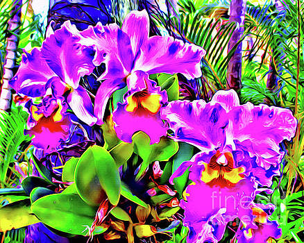 Orchids Hawaii by Jerome Stumphauzer