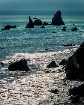 Mike Penney - Oregon Coast 21