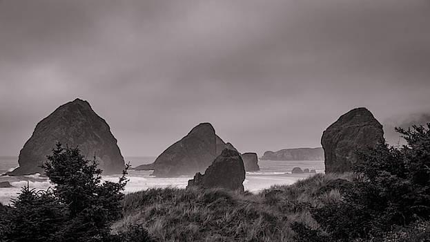 Mike Penney - Oregon Coast Fog 19