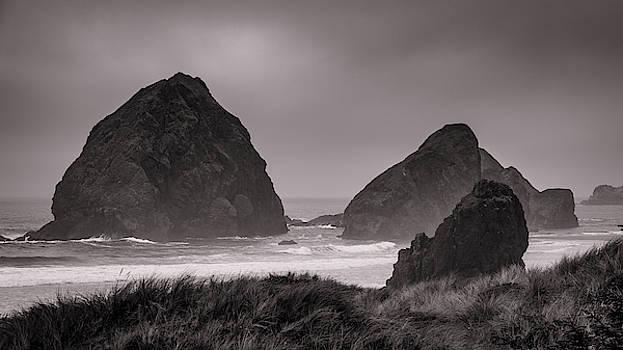 Mike Penney - Oregon Coast Fog 20