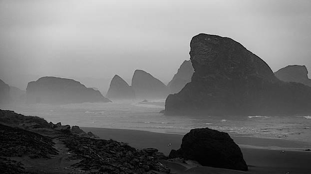 Mike Penney - Oregon Coast Fog 6