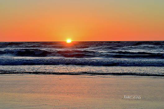 Oregon Coast Hwy 101 by Susie Loechler