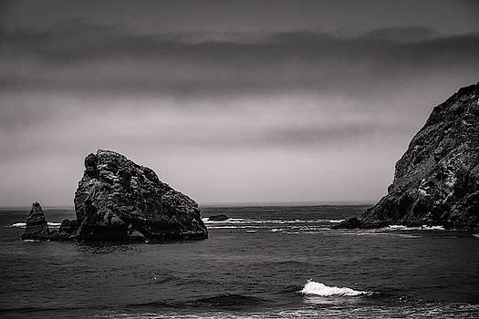 Mike Penney - Oregon Coast in the FOG 9