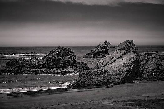 Mike Penney - Oregon Coastal Fog 11