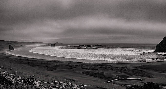 Mike Penney - Oregon coastal Fog 2