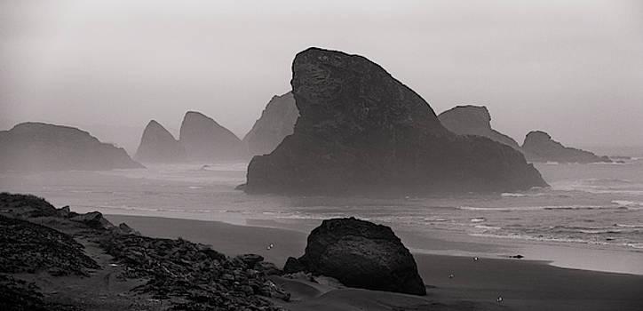 Mike Penney - Oregon Coastal Fog 4