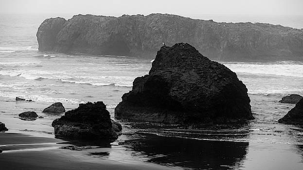 Mike Penney - Oregon Coastal Fog 5