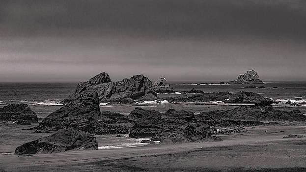 Mike Penney - Oregon Coastal Fog 7