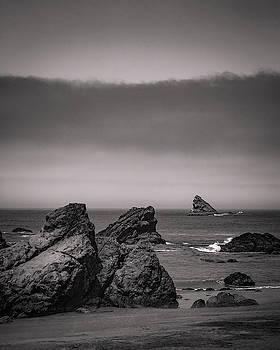 Mike Penney - Oregon Coastal fog 8