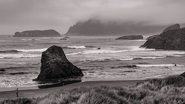 Mike Penney - Oregon coastal fog, BW 3
