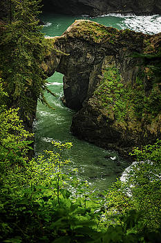 Mike Penney - Oregon Coastal Scene 12