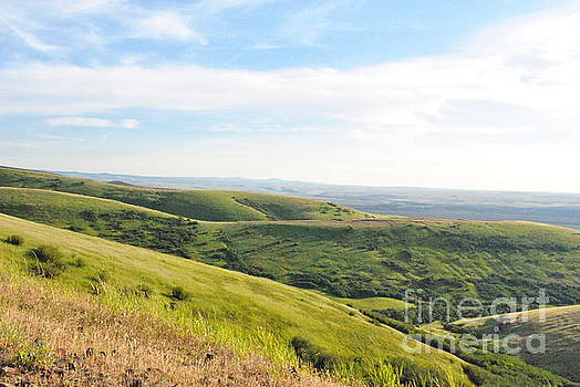 Oregon Hills by Madison Shull