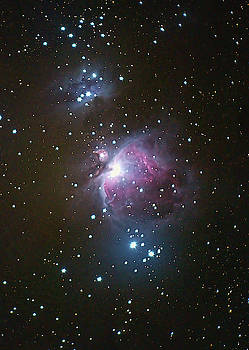 Orion Nebula by Mark Duehmig