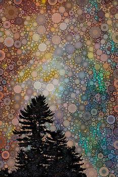 Orion sky by Daniel McPheeters