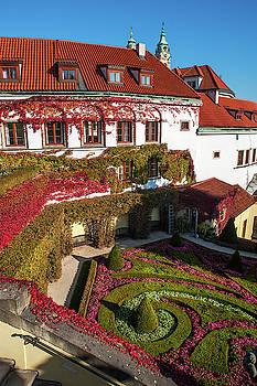 Jenny Rainbow - Ornamental Flowerbed in Vrtba Garden