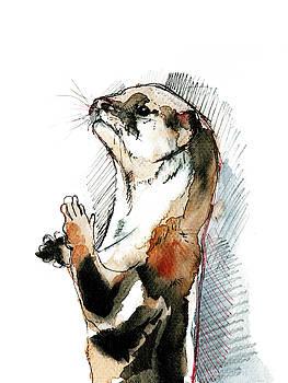 Otter Amblonyx cinerea by Belette Le Pink