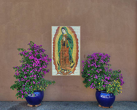 Our Lady at St. Francis by Darin Williams