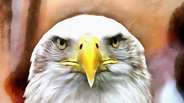 Our Nations Bird by Harry Warrick