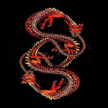 Ouroboros Twins by Bob Orsillo