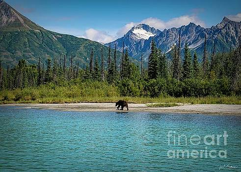 Out for a Stroll in Lake Clark National Park - bears by Jan Mulherin
