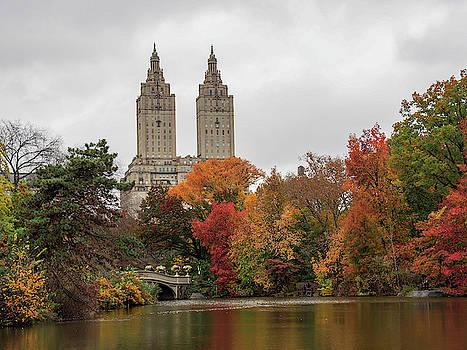 Central Park Lake by Cornelis Verwaal